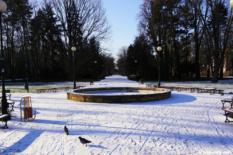 Park gen. Gustawa Orlicz-Dreszera