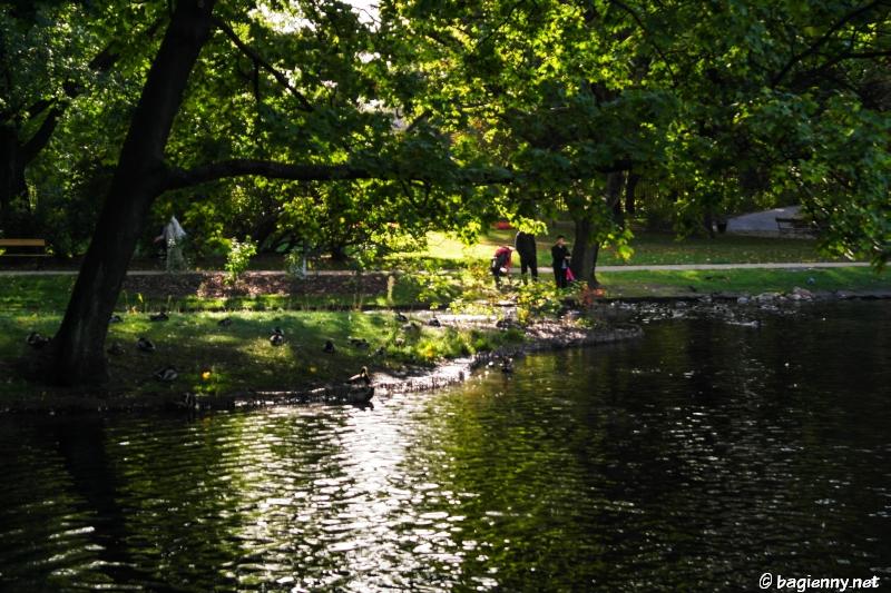Ogród Krasińskich